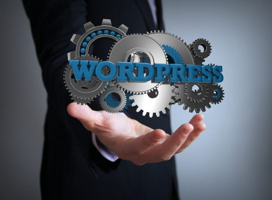 WordPress For Your Website