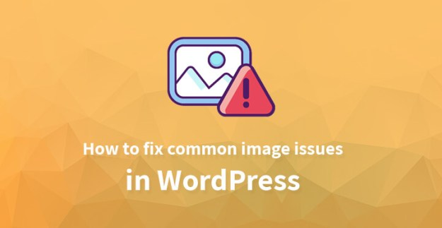 common image issues in WordPress
