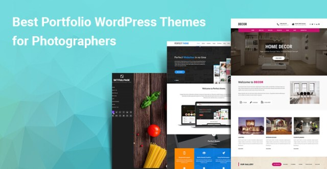 Best Portfolio WordPress Themes for Photographers