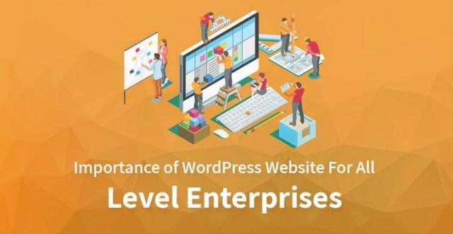 Importance of WordPress Website For All Level Enterprises