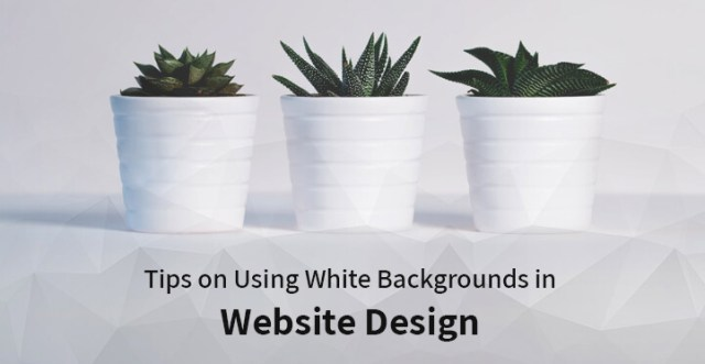 Tips on Using White Backgrounds in Website Design