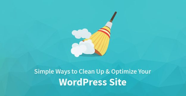 clean up your WordPress website
