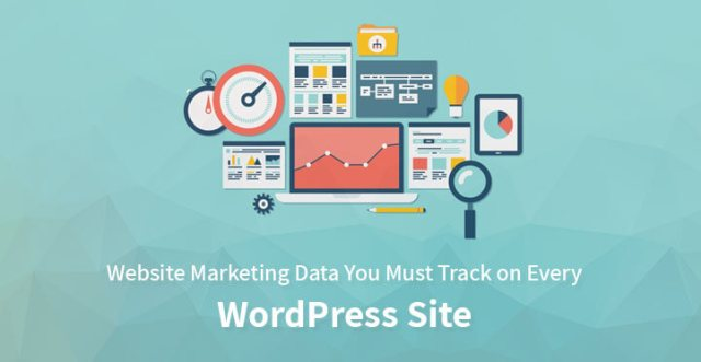 Website marketing data
