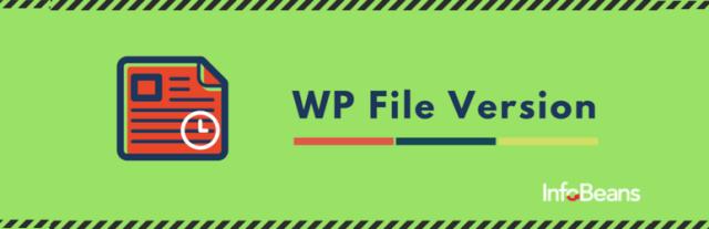 WP File Version