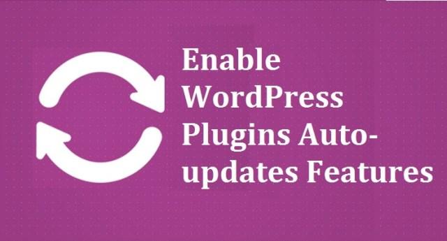 Enable WordPress Plugins Auto-updates Features