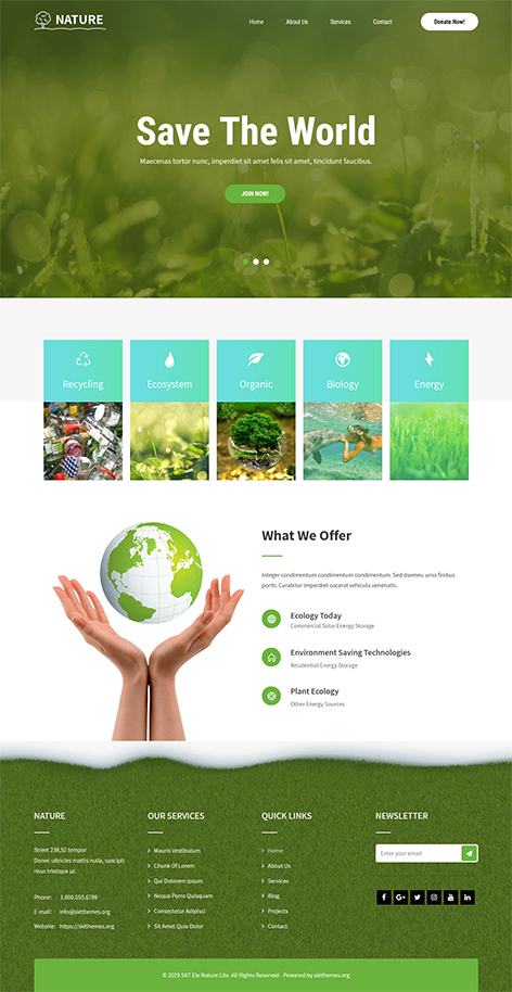free green WordPress theme
