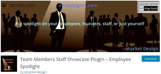 team member staff showcase plugin