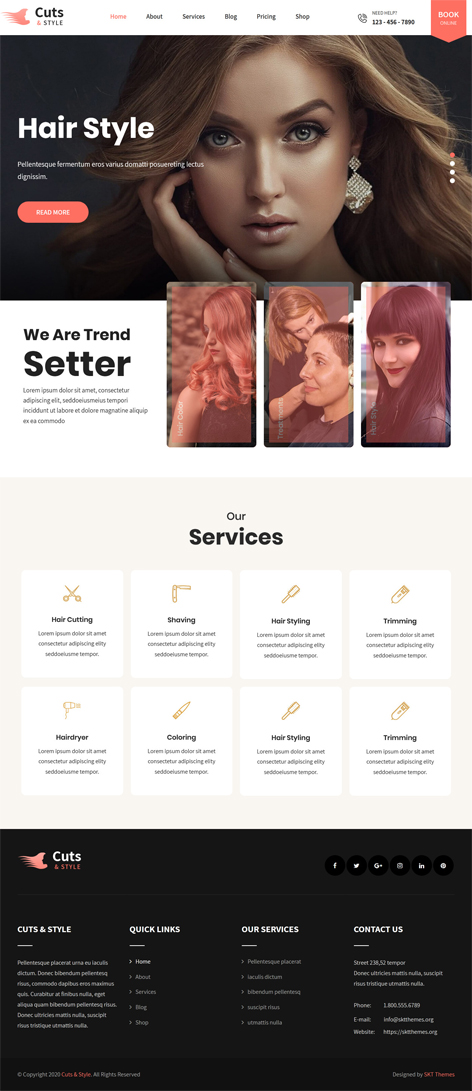 free responsive hair salon WordPress theme
