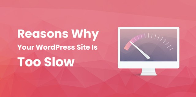 WordPress Site Is Too Slow