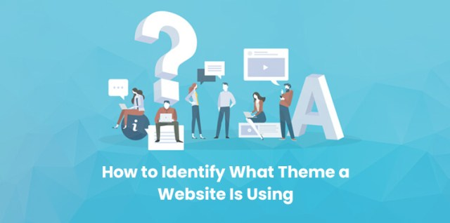 Theme a Website Is Using