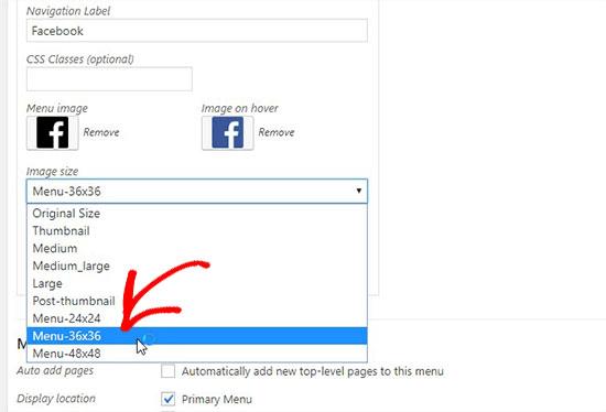 social media icon size