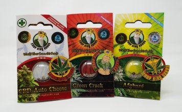 Corp King Cannabis seed package