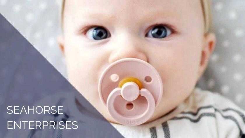 seahorse enterprises baby case study