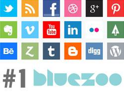 How To Boost Your Online Presence #1: Blue Zoo Studio