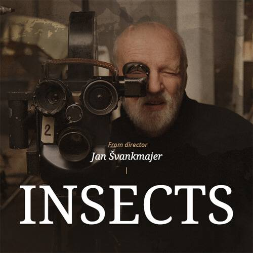The title photo of Jan Švankmajer's Indiegogo campaign for his last feature film, Insects (©Athanor)