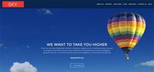 New Sky's Website