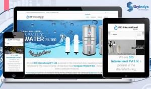Skyindya Web Design Work - DID International