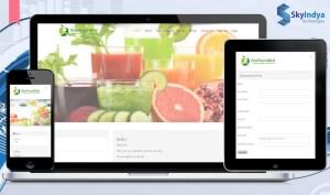 Skyindya Web Design Work - One Touch Diet