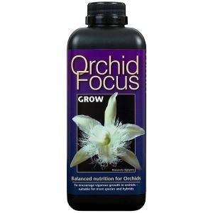 Orchid Focus Grow 300ml