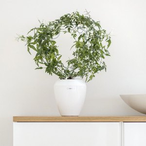 Plastia Calimera A1 Self-watering Plant Pot