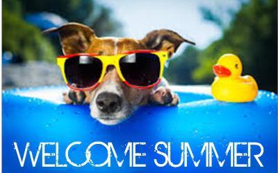 Hello Summer!  New Hours for Skyline Marina!