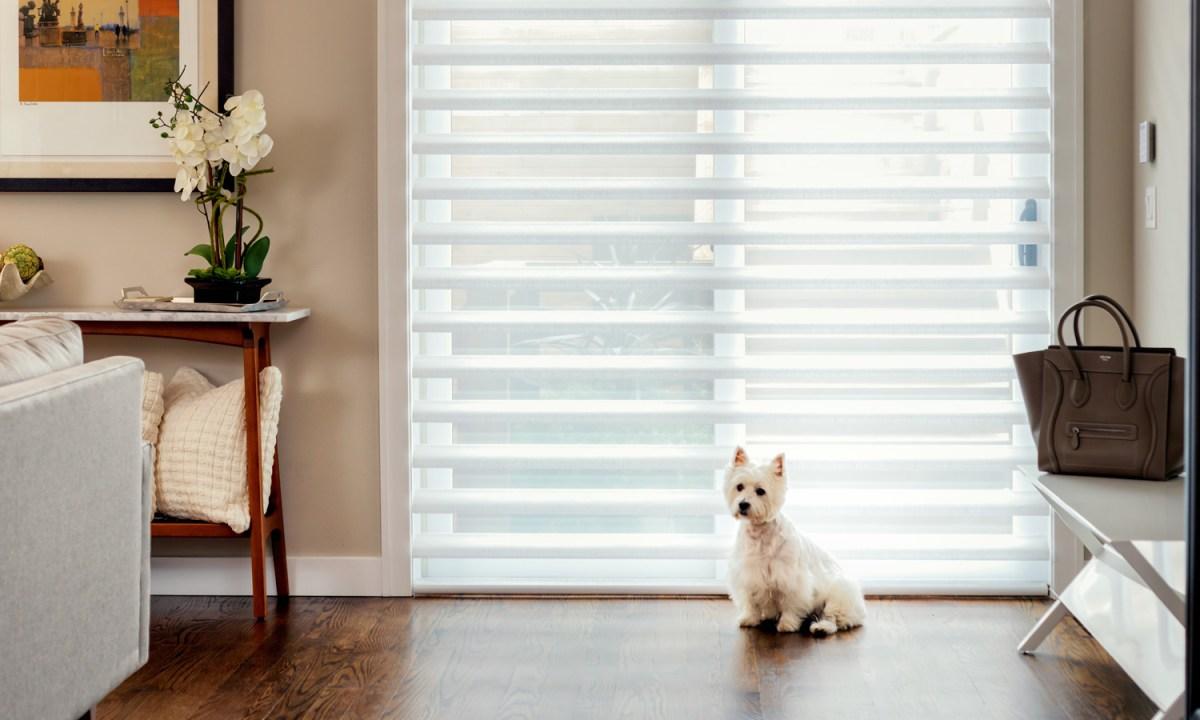 window treatments - window coverings ideas