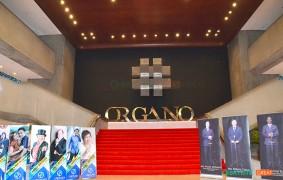 organo_gold_15