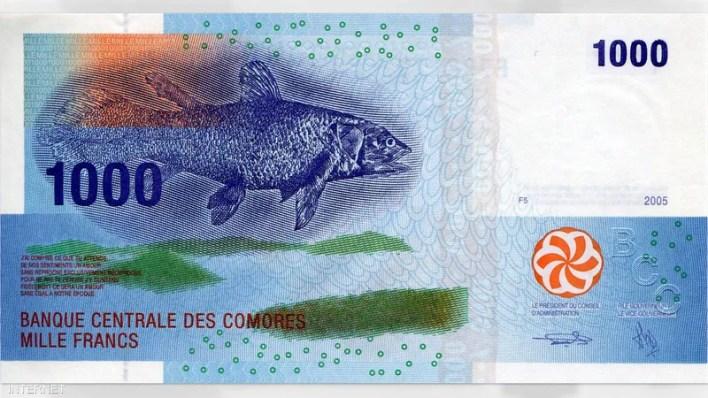 1000 فرانك - جزر القمر