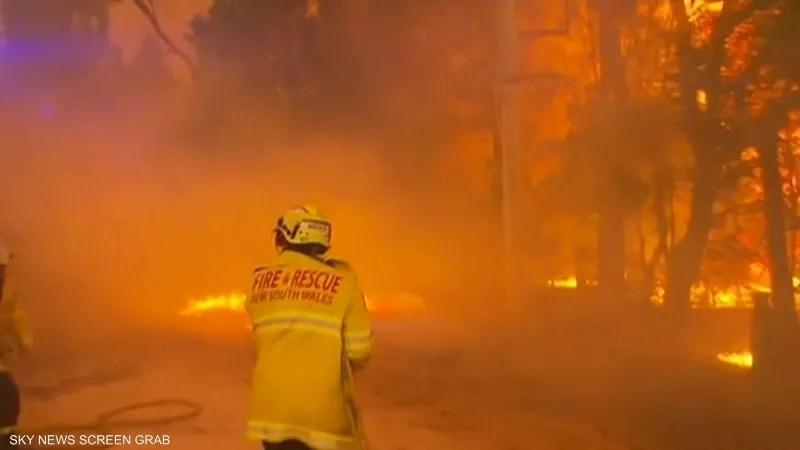 حرائق أستراليا تقتل 500 ألف حيوان