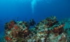Απροστάτευτη θάλασσα η Μεσόγειος
