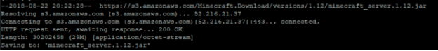 Installing Minecraft server