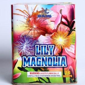 Lily Magnolia 16Shots