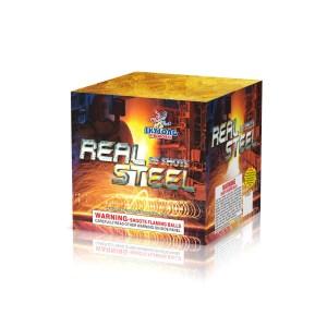 Real Steel 25Shots