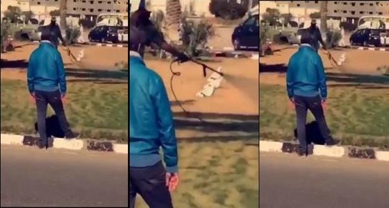 بالفيديو.. تزيين مزيف لشوارع الطائف تزامنا مع زيارة أمير مكة