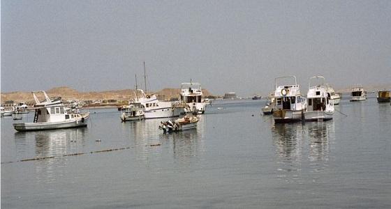غواص يكتشف سر الأصوات الغريبة في قاع البحر الأحمر