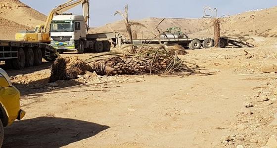 بالصور.. إزالة تعديات على الأراضي بوادي نيمار