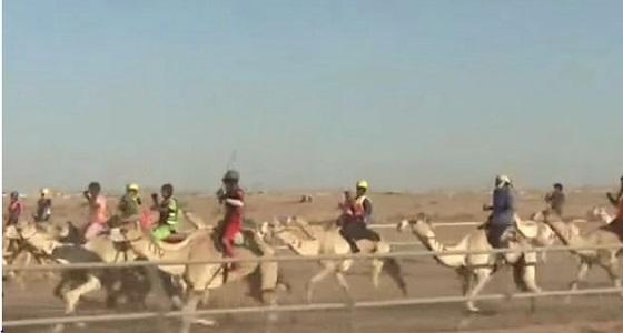 بالصور والفيديو.. خادم الحرمين يشهد انطلاق سباق الهجن