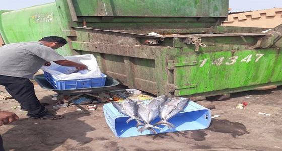 بالصور.. بلدية جازان تصادر 100 كيلو أسماك بسوق السمك
