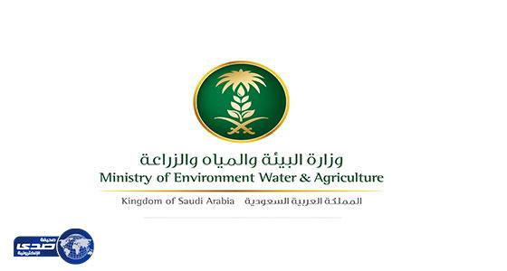 """"""" البيئة """" : ارتفاع تراخيص المشاريع الزراعية 47.7% خلال النصف الأول من 2019"""