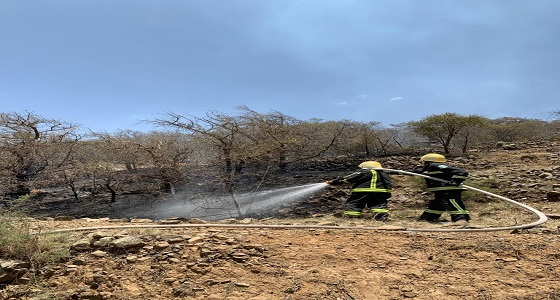 بالصور.. اندلاع حريق في مجموعة أشجار بوادي الشولان بحداد بني مالك