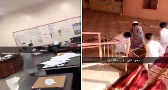 بالفيديو.. فأر في إحدى مدارس الدمج بالمملكةوالطلاب يهاجمونه دون خوف