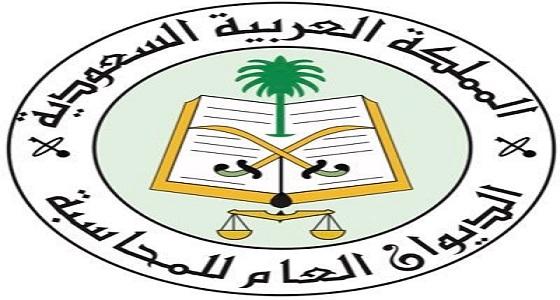 الديوان العام للمحاسبة رئيسا للمنظمة العربية للأجهزة العليا للرقابة