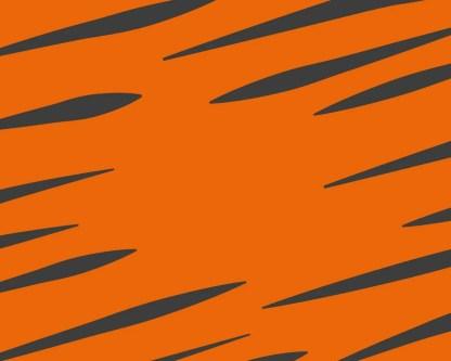 Slab Artisan Fudge - Tiger Butter Flavour Graphic 2
