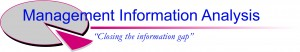 Management Information Analysis logo