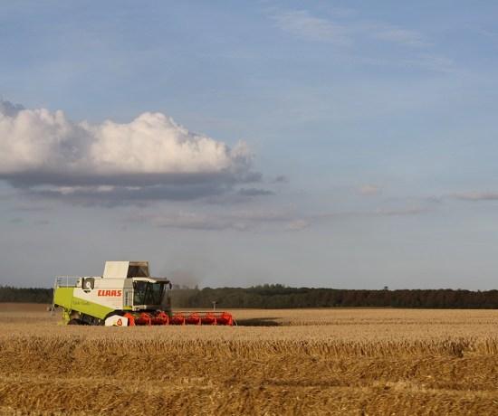 August er høsttid