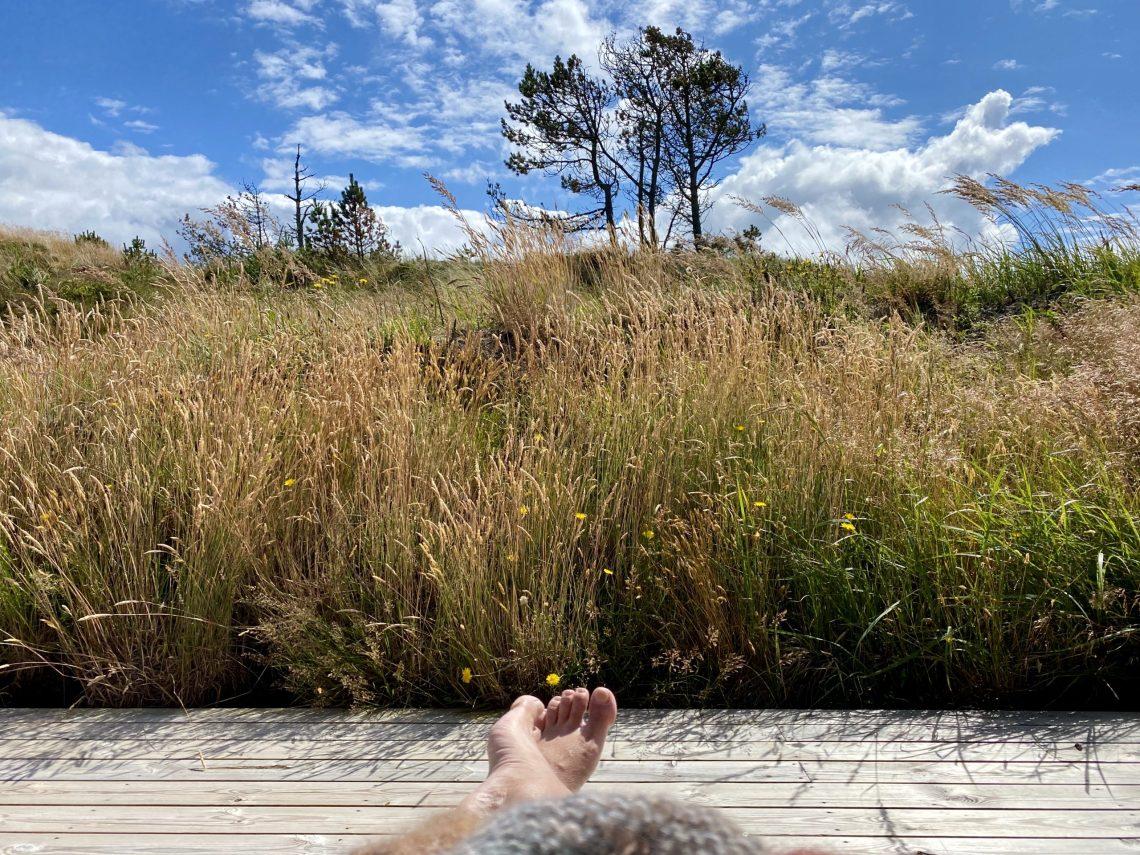 Dansk sommer er omskiftelighedens holdeplads. Vægelsindets højborg. Årsagen til en omfattende sommerhusgarderobe. Lige præcis så elskelig, som jeg husker den.