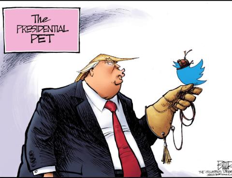 Trump Tweets ignoring Climate