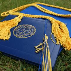 Diploma - Theoretical Education