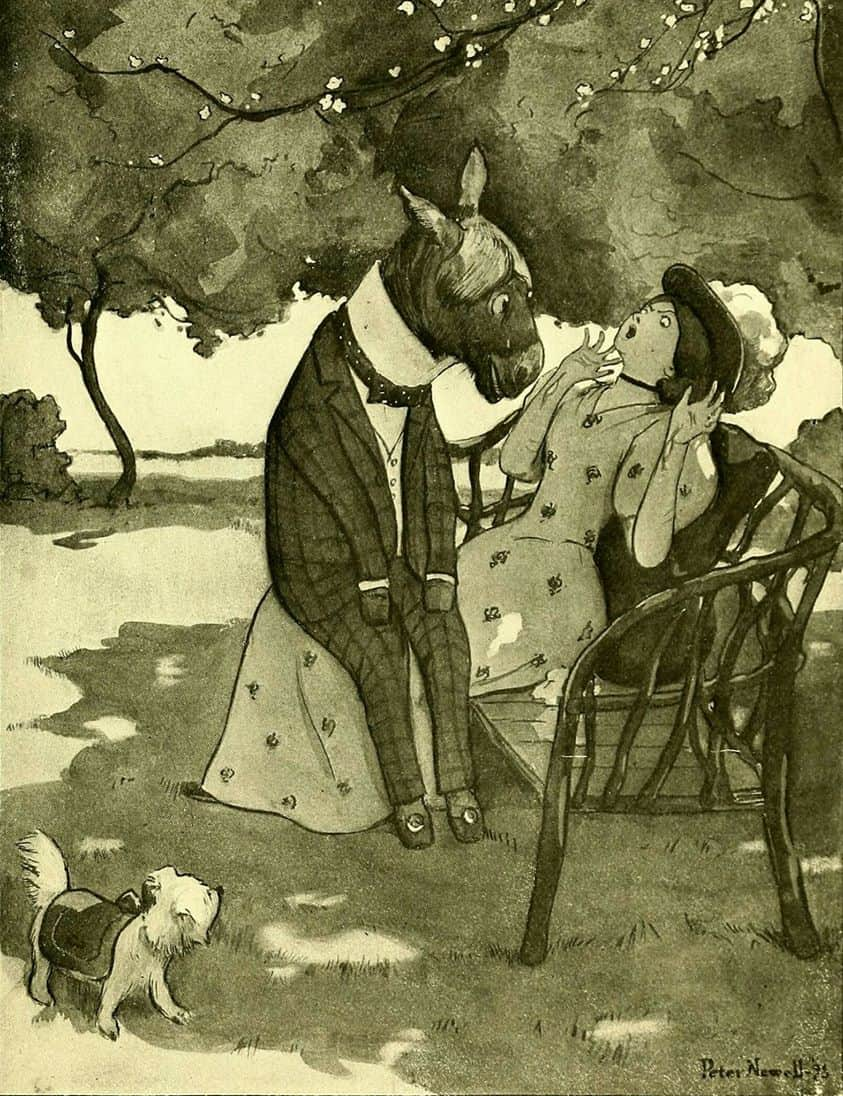 Fables for the frivolous 1899 by Guy Wetmore Carryl illustrated by Peter Newell