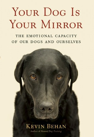 Your Dog Is Your Mirror cover